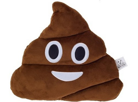 design-essentials-emoji-cushion-poo-face-503x370-----ok.jpg