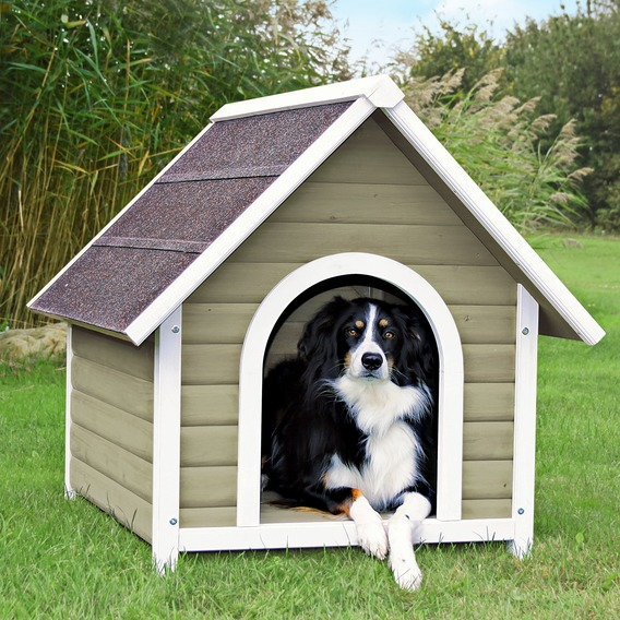 Basic-Dog-Kennel.jpg